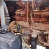 低价出售17年志高110-14.5空压机两台,使用几百小时